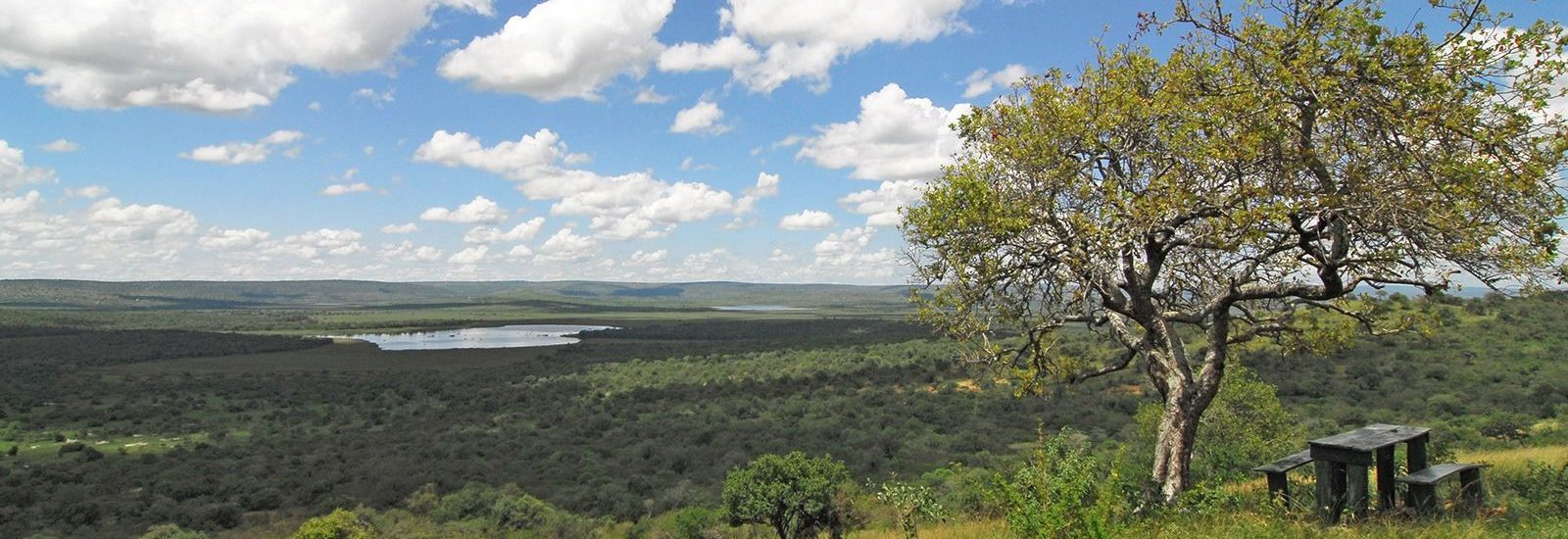 14 Days Uganda Wildlife Adventure Vacation
